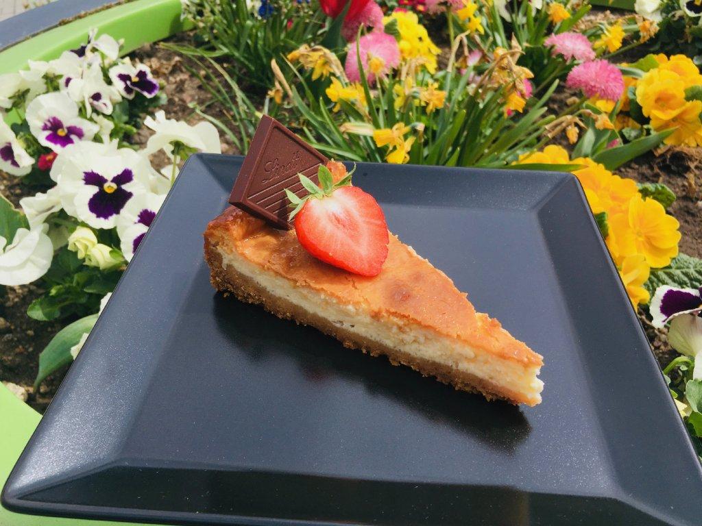 americky cheesecake dezert 2