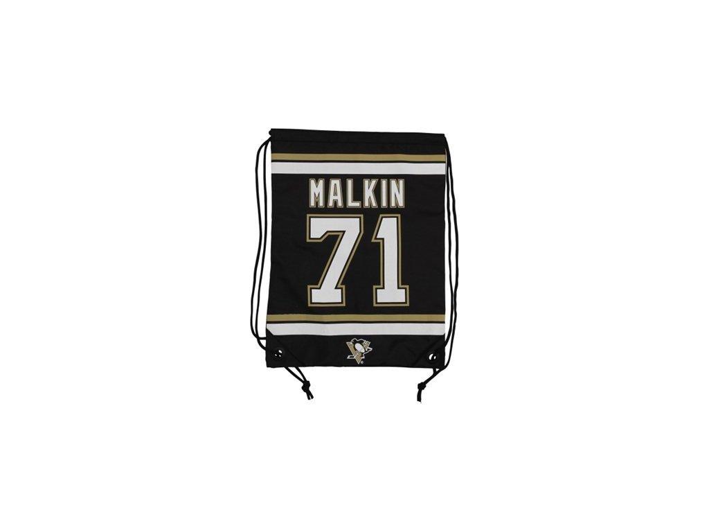 NHL vak Evgeni Malkin Pittsburgh Penguins