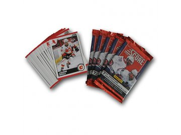 Karty NHL - Calgary Flames 2010-11 Team Trading Card Set with 6 Card Packs!