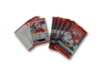 Karty NHL - Detroit Red Wings 2010-11 Team Trading Card Set with 6 Card Packs!