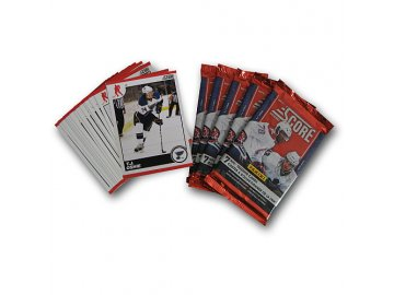 Karty NHL - St. Louis Blues 2010-11 Team Trading Card Set with 6 Card Packs!