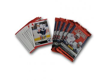 Karty NHL - Toronto Maple Leafs 2010-11 Team Trading Card Set with 6 Card Packs!