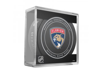 FLORIDA PANTHERS NEW GAME PUCK CUBE 900x900[1]