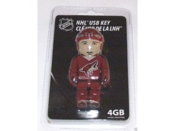 USB flash disk Arizona Coyotes 4GB