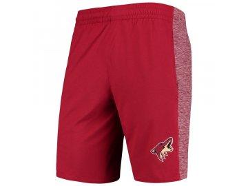 shorts ari
