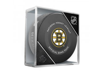 NHL BOSTON BRUINS CUBE RG19 900x900