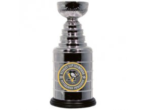 PITTSBURGH PENGUINS 2016 STANLEY CUP CHAMPIONS 2016 REPLICA