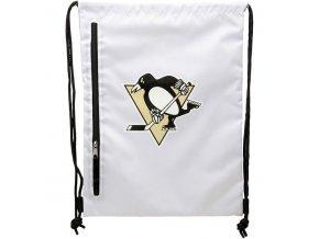 NHL vak Pittsburgh Penguins Chalk