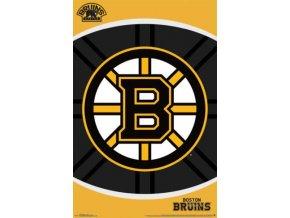NHL Plakát Boston Bruins Future Logo