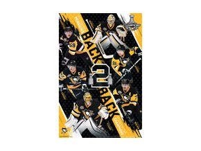 "Plakát Pittsburgh Penguins 2017 Stanley Cup Champions 24"" x 36"" Collector's Edition Poster"