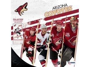 Kalendář Arizona Coyotes 2018 Team Wall