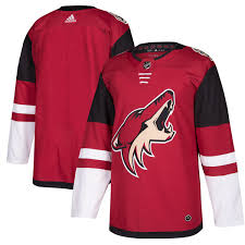 DRESY Arizona Coyotes