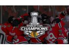 Stanley Cup Champions 2015