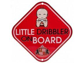 Cedule Sunderland AFC Dítě v Autě
