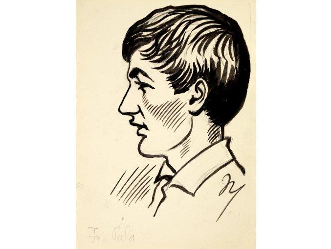 M. Niederle kresba František Pála