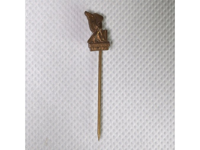 Odznak Všesokolský slet v Praze 1948DSC 9845.dng
