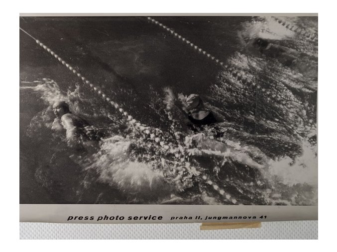 Tiskové foto,mezinárodní plavecký závod AXADSC 8650