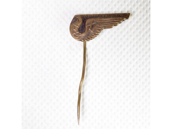 Odznak ,VII. Všesokolský slet v PrazeDSC 9847