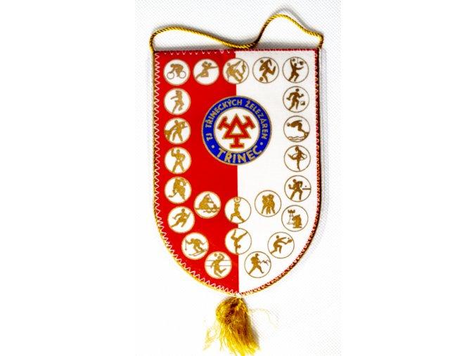 Klubová vlajka TJ Třinecké železárnyKlubová vlajka TJ Třinecké železárny (1)