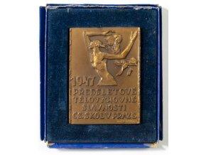 Plaketa Sokol, předsletové slavnosti, 1947 (1)