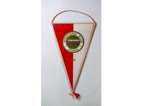 Vlajka klubová SK SLAIA PRAHA 1893 2