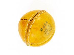 Kriketový míček, Gala Prostějov