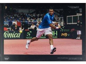 Velkoformátová fotografie, J.W. Tsonga, Davis Cup Ostrava, 2009
