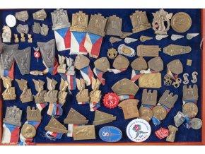 Konvolut sokolských odznaků, 88 ks v dřevěné prosklené kazetě (1)