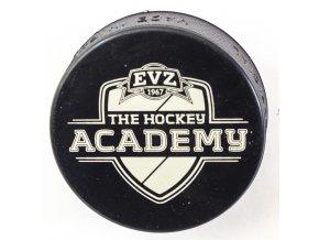 Puk EVZ, The Hockey Academy II