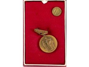 Dekorace ČSTV, Za zásluhy, bronzová (1)