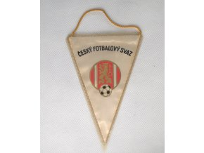 Klubová vlajka Dukla ČSSRDSC 8367.dng