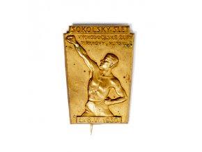 Odznak Sokolský slet východoeské župy 1930DSC 4247