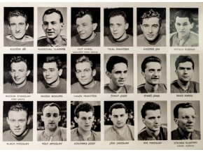 Mužstvo ČSSR MS v hokeji 1959 Československo IIDSC 4621
