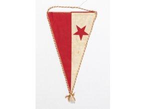 vlajka slavia hedvabiHrací karty, fotbal (7)