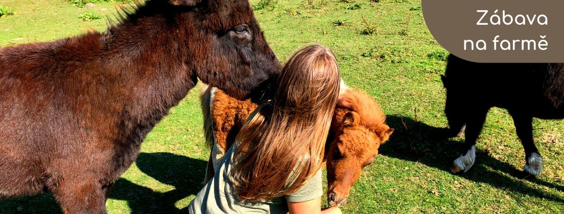 Život na Farmě Bovine