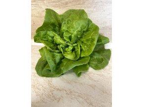 Hlávkový salát