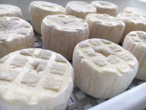 Zrající sýr kravský 1 g