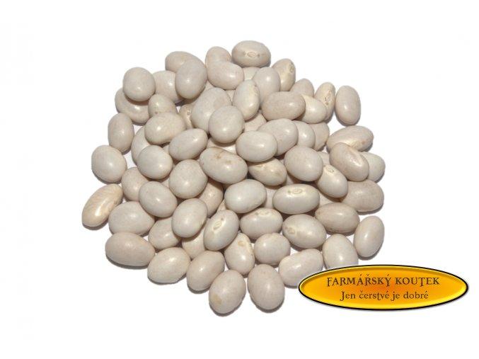 Malé bílé fazole  - perlička