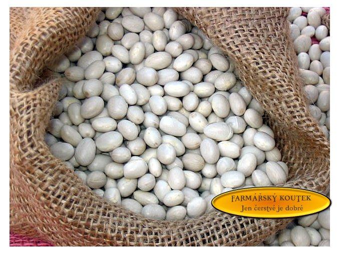 Malé bílé fazole