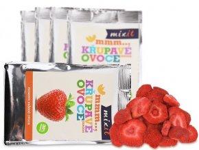 novy pytlik jahoda 5 ks produktovka resized preview (1)