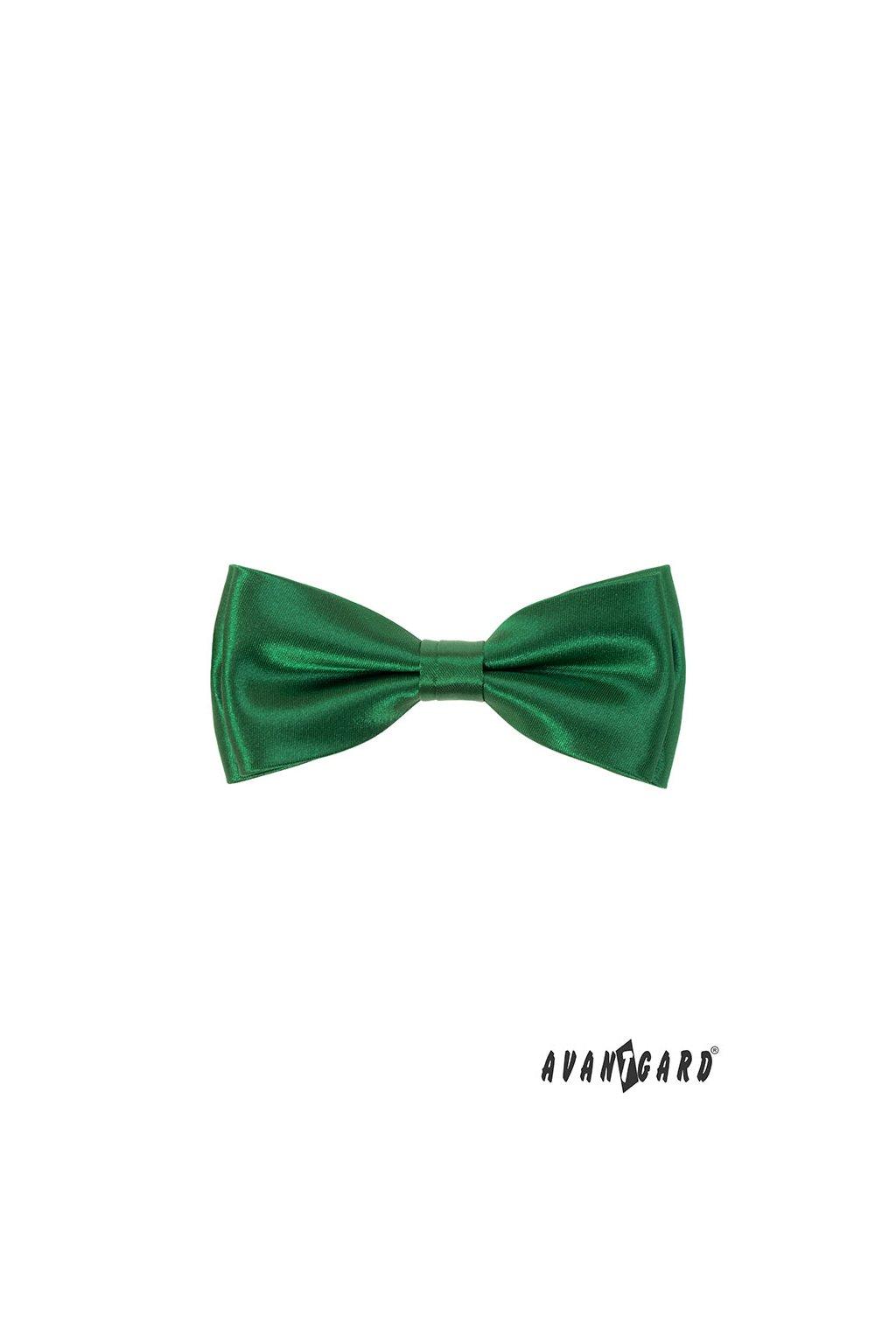 Motýlek s kapesníčkem zelená 575 - 9023