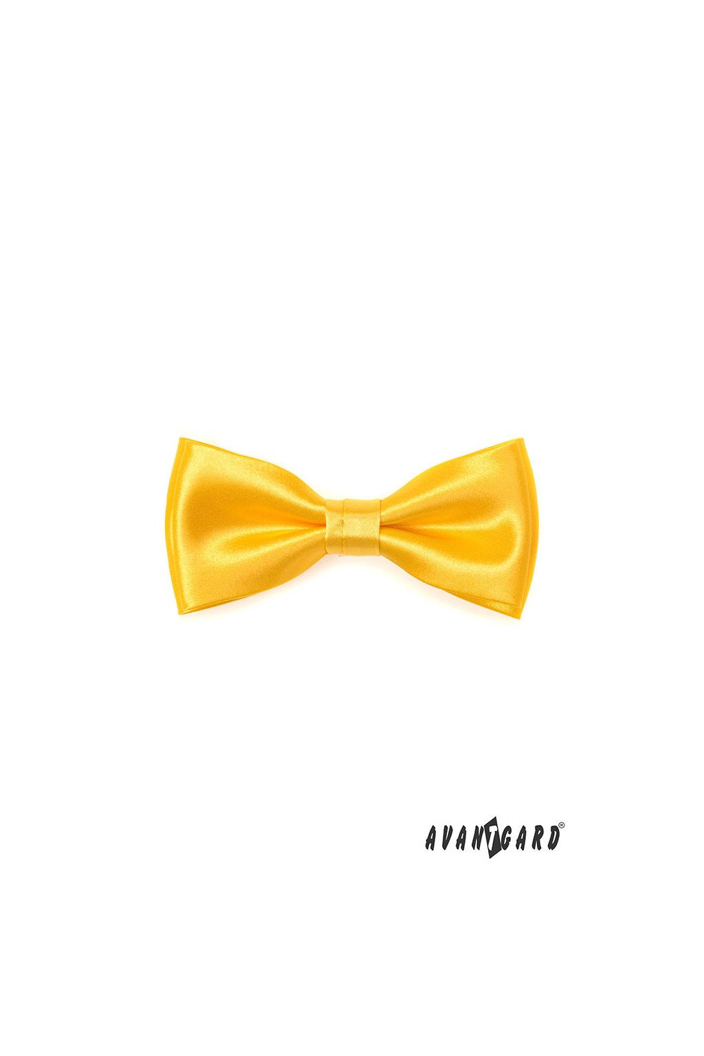 Motýlek s kapesníčkem žlutá 575 - 9027