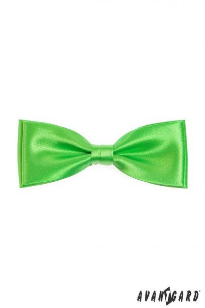 Motýlek s kapesníčkem zelená 575 - 9026