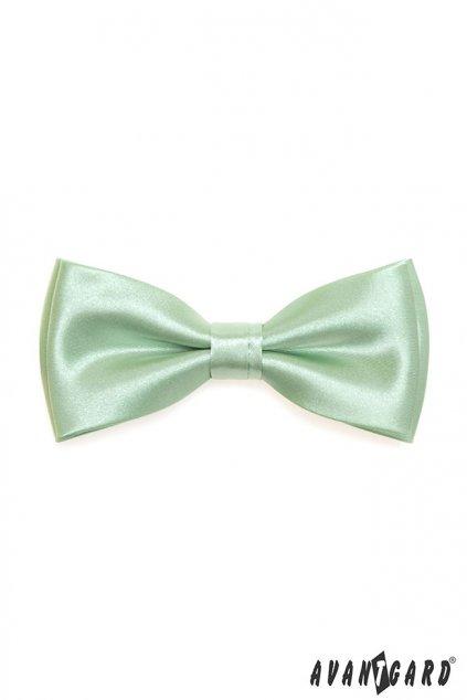 Motýlek s kapesníčkem zelená 575 - 9024