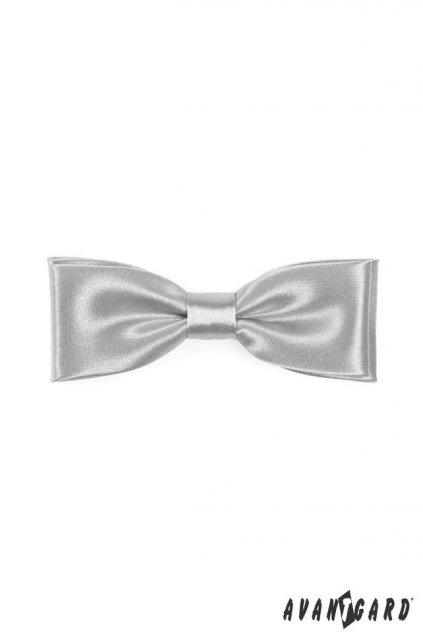 Pánský motýlek stříbrný 576 - 9021