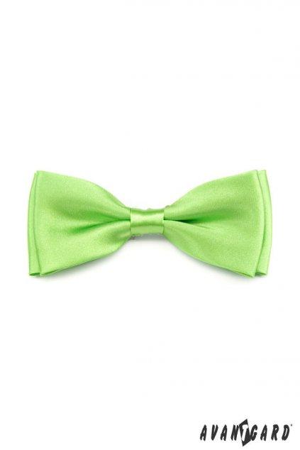 Pánský motýlek zelený 553 - 780