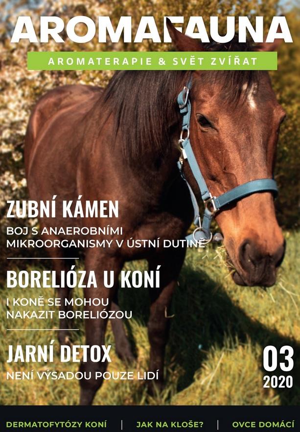 antiparazitní účinky, zubní kámen, borelioza u koní, snížena elasticita kůže, atypická myopatie koní, hříbě, jarní detox, anglický plnokrevní, koupání koně