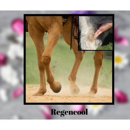 regencool