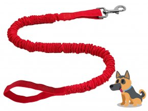 Dog+Leash+With+Clip+Red