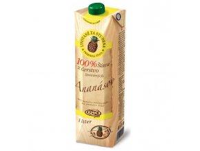 Džús RIO Fresh Ananás 100% 1l